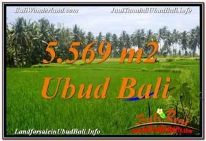 Exotic LAND SALE IN Sentral / Ubud Center BALI TJUB642