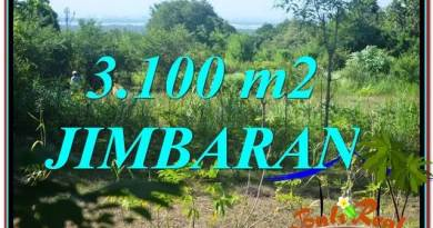 FOR SALE Magnificent 3,100 m2 LAND IN JIMBARAN TJJI113