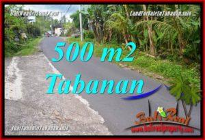 Beautiful PROPERTY 500 m2 LAND SALE IN TABANAN TJTB362