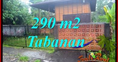 FOR SALE Exotic 290 m2 LAND IN TABANAN BALI TJTB358