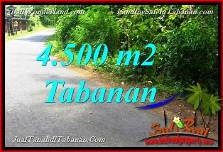 Cheap Property in Bali Land for sale in Tabanan