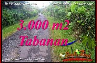 FOR SALE Exotic PROPERTY 3,000 m2 LAND IN Tabanan Selemadeg BALI TJTB366