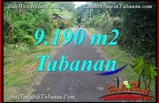 Affordable PROPERTY 9,190 m2 LAND IN Tabanan Selemadeg Timur FOR SALE TJTB368