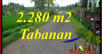 Beautiful PROPERTY LAND SALE IN Tabanan Selemadeg BALI TJTB374
