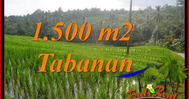 FOR SALE Magnificent LAND IN TABANAN TJTB375
