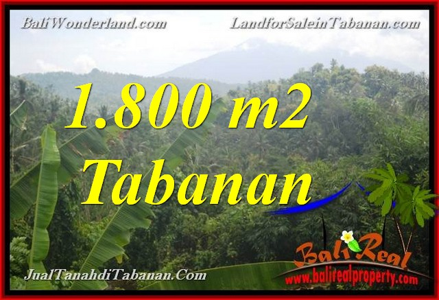 FOR SALE 1,800 m2 LAND IN Tabanan Selemadeg BALI TJTB379