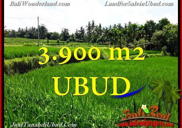 FOR SALE LAND IN Ubud Pejeng TJUB658