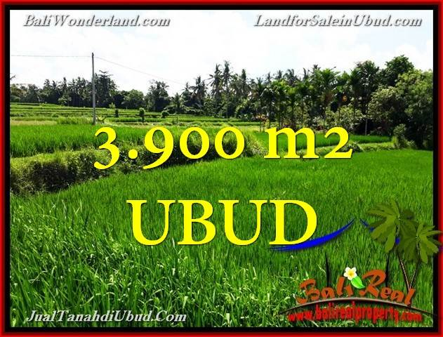 Exotic PROPERTY UBUD BALI 3,900 m2 LAND FOR SALE TJUB658