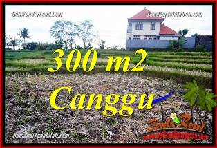 Exotic 300 m2 LAND IN CANGGU BALI FOR SALE TJCG230