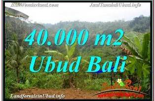 Magnificent UBUD BALI LAND FOR SALE TJUB679