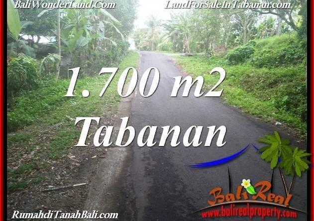 Beautiful PROPERTY TABANAN SELEMADEG BALI 1,700 m2 LAND FOR SALE TJTB385