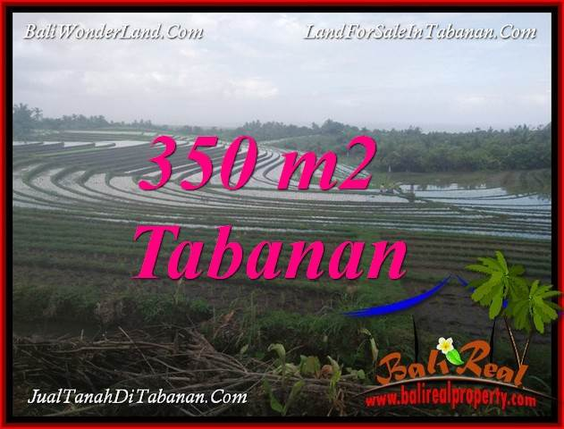 Exotic 350 m2 LAND FOR SALE IN TABANAN SELEMADEG BALI TJTB386