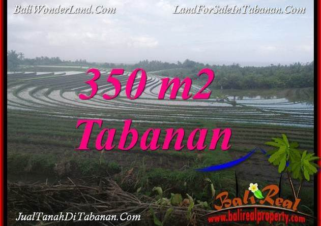FOR SALE Beautiful LAND IN TABANAN BALI TJTB386