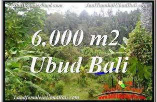 Exotic PROPERTY LAND SALE IN UBUD TJUB682