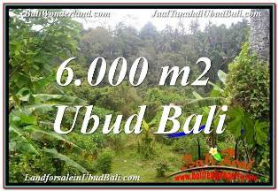 Affordable PROPERTY 6,000 m2 LAND SALE IN UBUD TEGALALANG BALI TJUB682