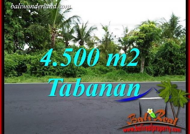 Exotic Property 4,500 m2 Land sale in Tabanan Selemadeg TJTB395
