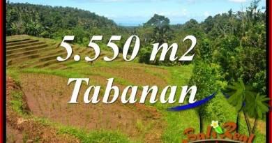Exotic Property 5,550 m2 Land for sale in Tabanan Selemadeg TJTB405