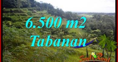 FOR sale Exotic 6,500 m2 Land in Tabanan Bali TJTB416