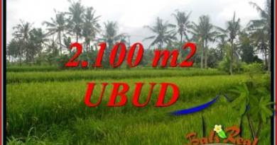FOR sale Exotic Property Land in Ubud TJUB710