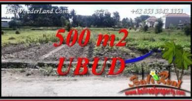 Exotic 500 m2 Land in Sentral Ubud for sale TJUB720