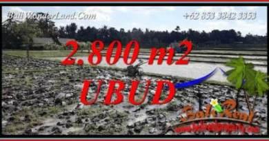 FOR sale Affordable Land in Sentral Ubud Bali TJUB722