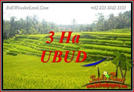 Beautiful 30,000 m2 Land sale in Ubud Bali TJUB733