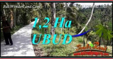 FOR sale Exotic Property 12,000 m2 Land in Ubud Tegalalang TJUB740