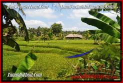 Affordable 5.000 m2 LAND IN UBUD FOR SALE TJUB449