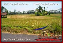 Beautiful PROPERTY 10.000 m2 LAND FOR SALE IN UBUD BALI TJUB456