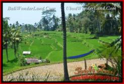 FOR SALE Magnificent PROPERTY 10.000 m2 LAND IN UBUD TJUB456