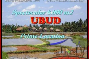 FOR SALE LAND IN Sentral Ubud TJUB441