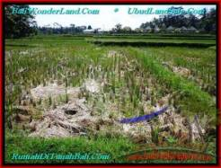 Magnificent 300 m2 LAND SALE IN UBUD BALI TJUB500