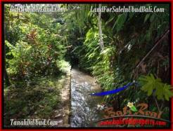 Affordable 1,910 m2 LAND IN UBUD BALI FOR SALE TJUB504