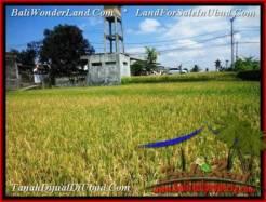 LAND SALE IN Sentral Ubud BALI TJUB508