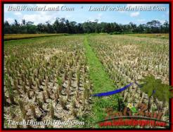 Magnificent PROPERTY LAND SALE IN UBUD TJUB498