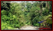 Beautiful PROPERTY 21,800 m2 LAND FOR SALE IN Sentral Ubud BALI TJUB546