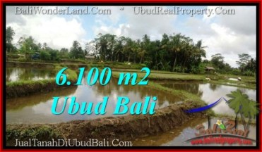 Exotic 6,100 m2 LAND FOR SALE IN UBUD BALI TJUB547