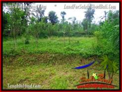 Magnificent 4,040 m2 LAND SALE IN UBUD BALI TJUB555