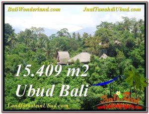 Affordable PROPERTY 15,490 m2 LAND IN UBUD BALI FOR SALE TJUB568