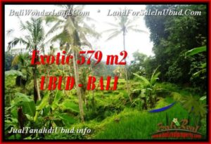 UBUD BALI 579 m2 LAND FOR SALE TJUB538