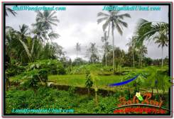 Magnificent PROPERTY UBUD LAND FOR SALE TJUB570