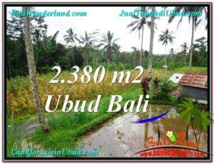 Exotic PROPERTY 2,380 m2 LAND SALE IN Ubud Payangan TJUB567