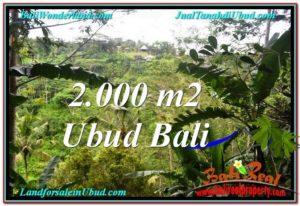 Beautiful PROPERTY 2,000 m2 LAND FOR SALE IN Ubud Payangan BALI TJUB573