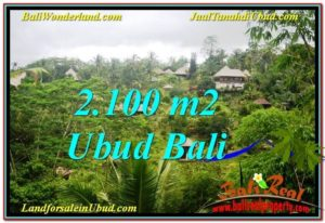 FOR SALE Magnificent PROPERTY LAND IN UBUD TJUB572