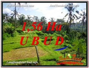 Exotic PROPERTY LAND IN UBUD FOR SALE TJUB601