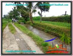 Magnificent LAND IN UBUD FOR SALE TJUB575
