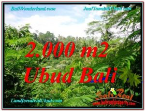 Exotic 2,000 m2 LAND IN UBUD BALI FOR SALE TJUB611