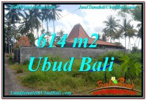 UBUD 614 m2 LAND FOR SALE TJUB622