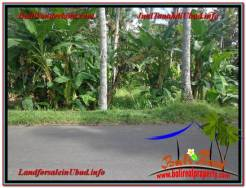 FOR SALE Magnificent PROPERTY 1,000 m2 LAND IN UBUD BALI TJUB604