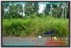 Exotic 614 m2 LAND IN UBUD BALI FOR SALE TJUB622